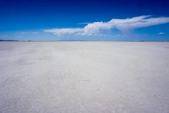 The salt flats with a blue sky and a passing cloud.